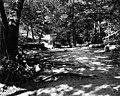 Ravenna Park trail, ca 1905 (SEATTLE 1532).jpg