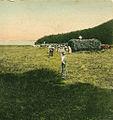 Razglednica Cerkniškega jezera 1907 (2).jpg