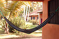 Reasons to travel image Hammock and palm trees.jpg