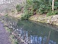 Reflections on the Cromford Canal - geograph.org.uk - 1735692.jpg