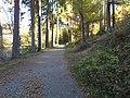 Remscheid - panoramio (6).jpg