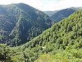 Reserva Natural Integral de Muniellos (Asturias, España) 10.JPG
