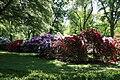 Rhododendronpark Bremen 20090513 237.JPG