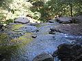 Ricketts Glen State Park F.L. Ricketts Falls 2.jpg