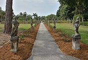 Ringling Museum rose garden Sarasota Florida.jpg