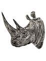 Rinoceronte - Juan Carlos Zamorano Camarena.jpg