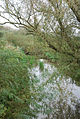 River Cale - geograph.org.uk - 577916.jpg