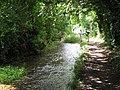 River Iwerne - geograph.org.uk - 1425614.jpg