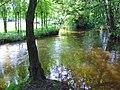 River Swalm.jpg