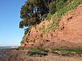River cliff at Lympstone - geograph.org.uk - 114555.jpg