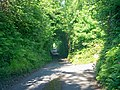 Rosemary Lane, Ludchurch - geograph.org.uk - 1365048.jpg