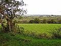 Rough pasture near Pentre Galar, Llanfyrnach - geograph.org.uk - 935169.jpg