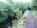 Royal Canal near Clonsilla - geograph.org.uk - 857741.jpg