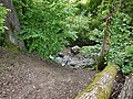 Ruisseau de Loverchy @ Parc du Val Vert @ Seynod (50884063818).jpg