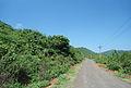 Rural road to Sambhuvanipalem from Bakkannapalem.JPG