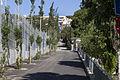 Rutes Històriques a Horta-Guinardó-torrent melic 02.jpg