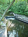 SBSP Rapid Run Dam.JPG