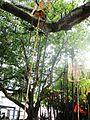 SRI MUNGIL KUTTHU MUNIAPPAN TEMPLE, Neikarapatty, Salem - panoramio (19).jpg