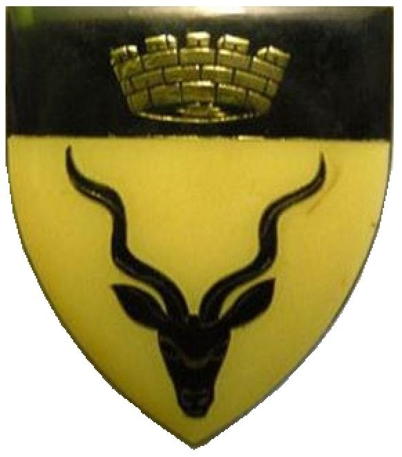 SWATF Regiment Windhoek emblem