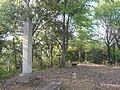 Sagiyama Castle M02.JPG