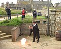 Saint Helier Day 2012 05.jpg