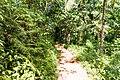 Samaná Province, Dominican Republic - panoramio (83).jpg
