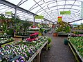 Sanders Gardenworld 1 - geograph.org.uk - 997424.jpg