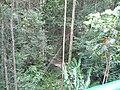 Sankt Lucia - panoramio - georama (26).jpg