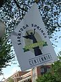 Saratoga Springs centennial banner.jpg
