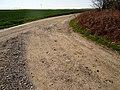 Schlegelweg Pirna (33877332496).jpg