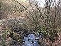 Schleiden Laßbach Blick nach Süden flussabwärts.jpg
