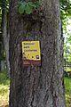 Schlosspark Lichtenau Schild 2016-06 NDM KR-056.jpg