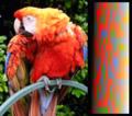 Screen color test VGA 256colors.png