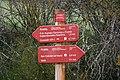 Señalización del Camino Natural del Románico Palentino (30 de abril de 2018, San Cebrián de Mudá).jpg