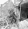 Searches rubble a131403-v6.jpg