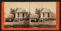 Section of the original Big Tree, and house on the Stump, by Lawrence & Houseworth.png