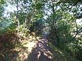 Sentier cotier riviere d'auray - panoramio.jpg