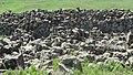 Sevaberd Fortress ruins (107).jpg