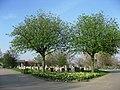 Shiregreen cemetery - geograph.org.uk - 401199.jpg
