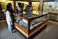 Showcase - Egyptian Human Mummy - Egyptian Gallery - Indian Museum - Kolkata 2014-04-04 4421.JPG