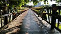 Shu Guang (Dawn) Bridge, Hualein City, Hualien County (Taiwan).3.jpg