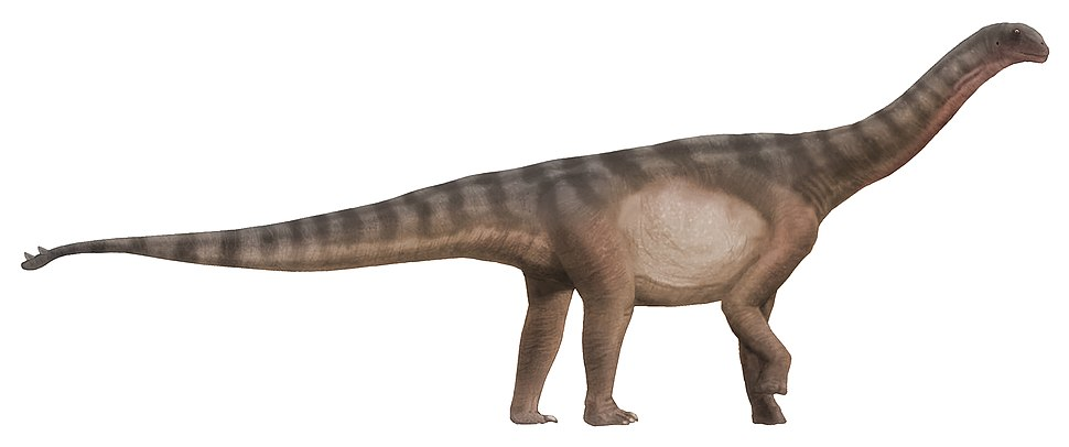 Shunosaurus life restoration