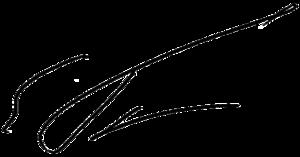 Yegor Gaidar - Image: Signature of Yegor Gaidar