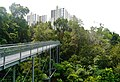 Singapore Southern Ridges Hilltop Walk 04.jpg