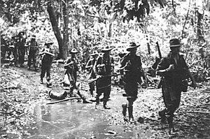 Ten men walking in single file though the jungle wearing slouch hats and carrying rifles.