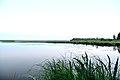 Sky and water of the Sestroretsk flood.jpg