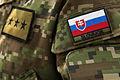 Slovak International Air Fest 2012 - AFRC -15.jpg