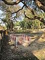 Smashan Kali Shrine - Smashan Kalitala - Baduria - North 24 Parganas 2012-02-24 2449.JPG