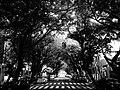 Snapshot, Taipei, Taiwan, 隨拍, 台北, 台灣 (14419456635).jpg