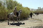 Soldiers continue Operation Kanjar DVIDS274345.jpg